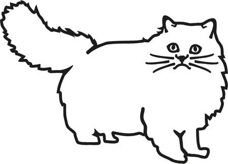 persian cat: Persian cat contour
