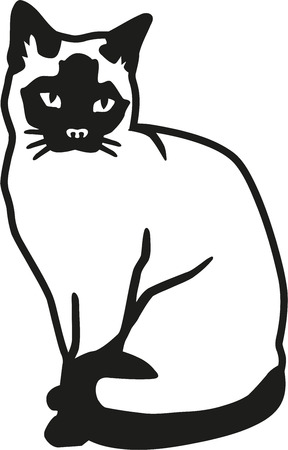 siamese: Siamese cat Illustration