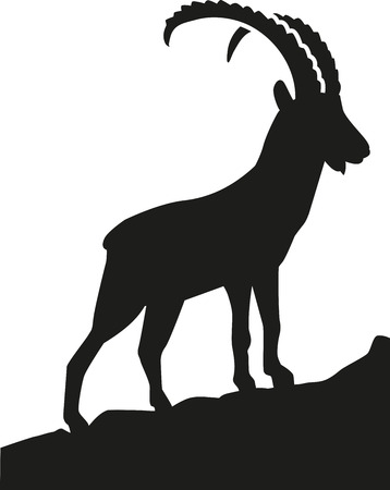 capricornio: Ibex en las montañas
