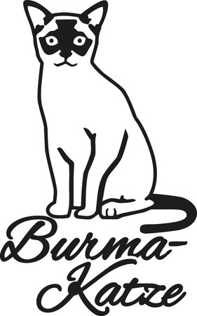 burmese: Burmese cat with german name Illustration