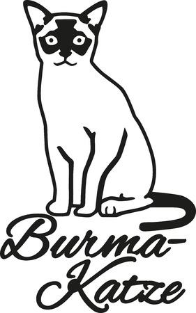 Burmese cat with german name
