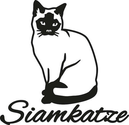 siamese cat: Siamese cat with german name
