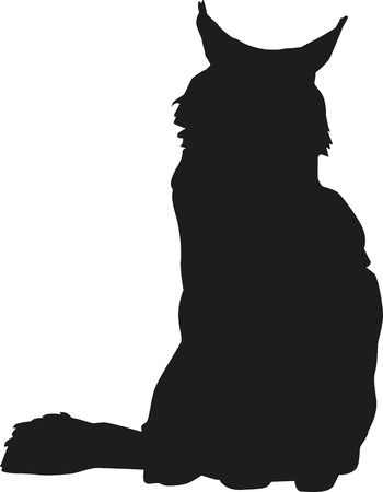 maine: Maine coon silhouette