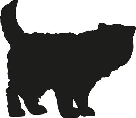 persian cat: Persian cat silhouette