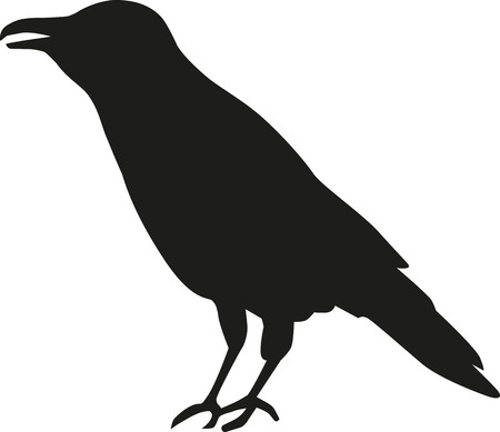 crow: Crow silhouette Illustration