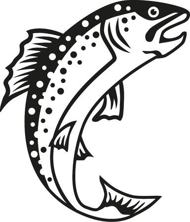 송어 물고기 일러스트