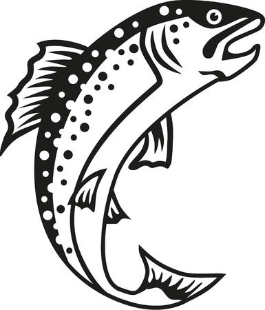 truchas: Pescados de la trucha