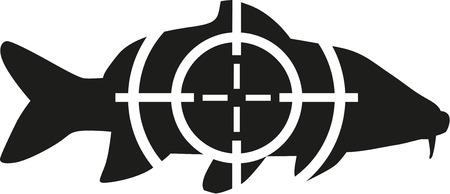 Karpfen mit Ziel