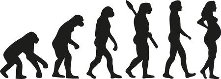 Pregnancy evolution Illustration