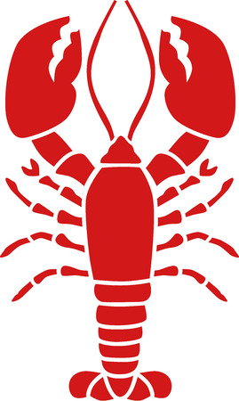 lobster isolated: Red lobster Illustration