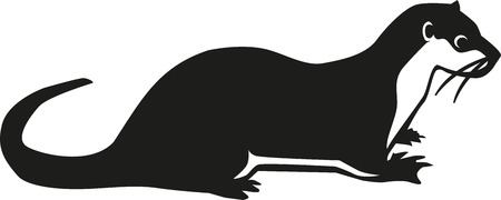 Lontra  Vettoriali