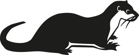 Otter  Vektorgrafik