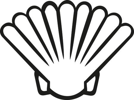 nautilus shell: Shell contour