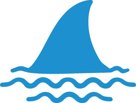 shark fin: Shark fin in water