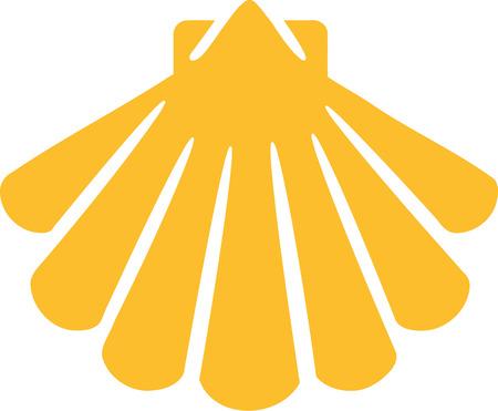 cockleshell: Shell icon