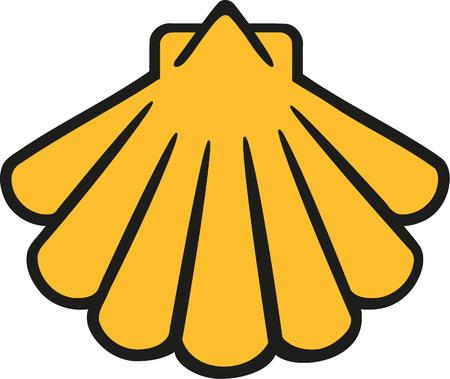 cockleshell: Shell cartoon Illustration