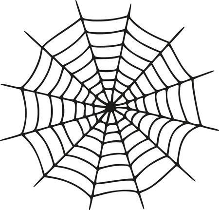 spider web: Spider web realistic