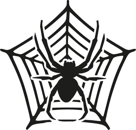 arachnid: Big Spider with web Illustration