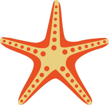 étoile de mer: dessin animé d'étoiles de mer
