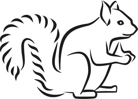 Eekhoorn kalligrafie stijl Vector Illustratie