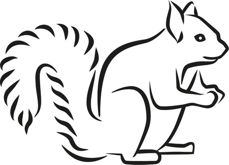caligraphy: Squirrel caligraphy style Illustration
