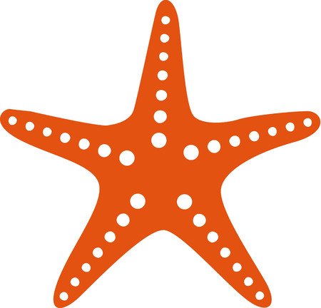 the icon: Starfish icon Illustration