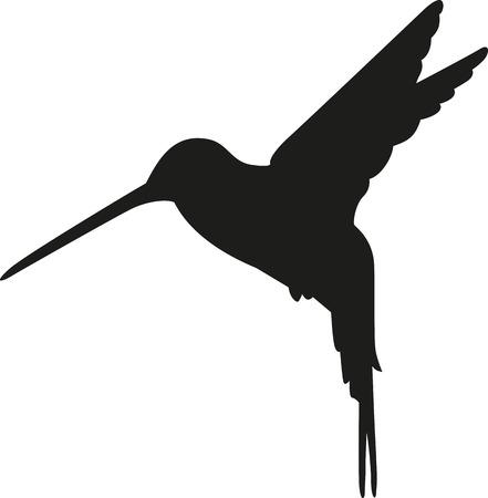 Hummingbird 실루엣 일러스트
