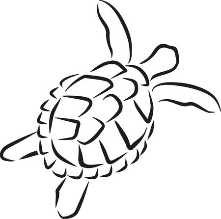 caligraphy: Swimming turtle caligraphy style Illustration