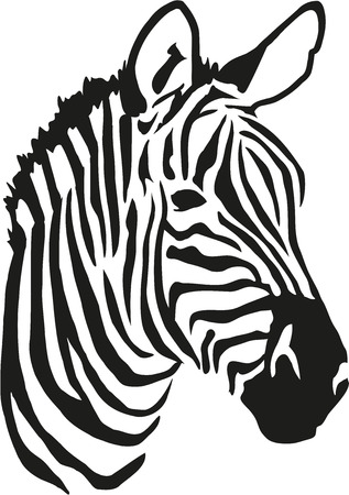 Zebra head images stock pictures royalty free zebra head photos zebra head pronofoot35fo Gallery