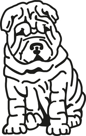 wrinkles: Shar pei with lots of wrinkles