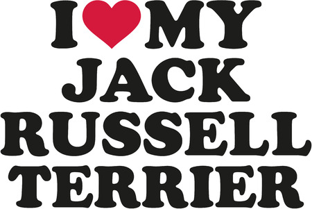 jack russell terrier: I love my Jack Russell Terrier
