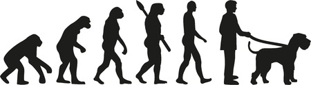 schnauzer: Giant Schnauzer  evolution Illustration