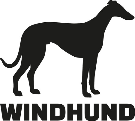 breed: Greyhound dog with german breed name Illustration