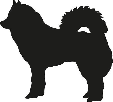 spitz: Eurasier dog Illustration