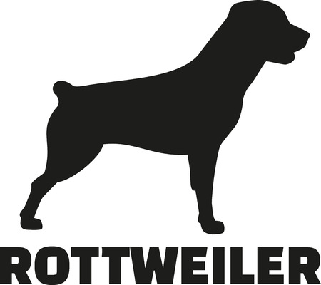 Rottweiler with breed name with short tail