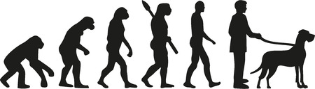great dane: Great dane evolution