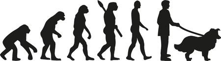 collie: Collie dog evolution