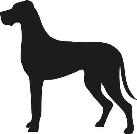 great dane: Great dane silhouette Illustration