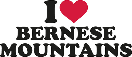 bernese: I love Bernese mountains