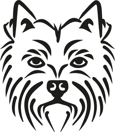 highland: West Highland Terrier head