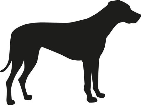 ridgeback: Rhodesian ridgeback silhouette