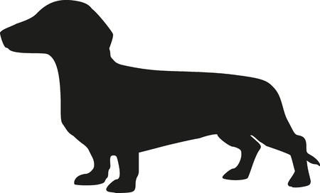 Silhouette of a dachshund