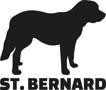 st bernard: St. Bernard dog with breed name Illustration