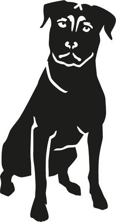 Sitting Rottweiler
