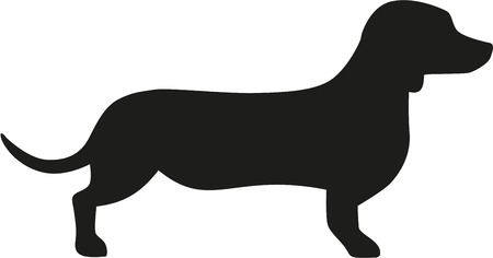 Dachshund icon