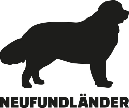 newfoundland: Newfoundland with german breed name Illustration