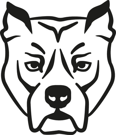 pit bull: Pit bull head Illustration