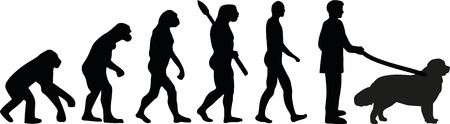 sapiens: Newfoundland evolution Illustration
