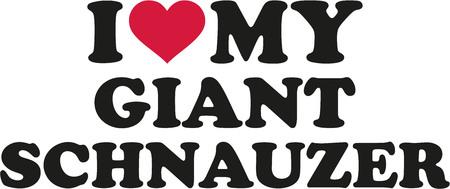 schnauzer: I love my Giant Schnauzer