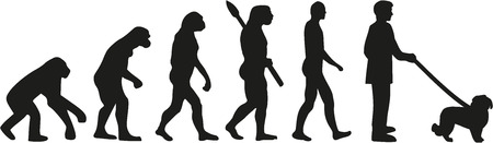 sapiens: Maltese dog evolution